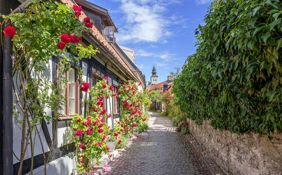 """""""A cidade das rosas e das ruínas"""""""